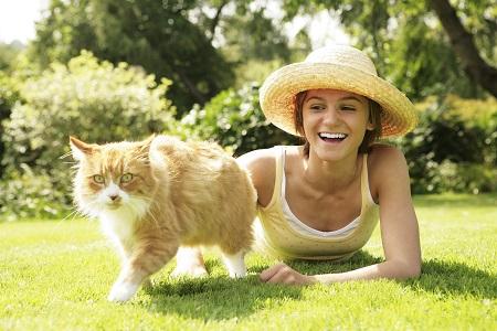 על חתולים ועלינו